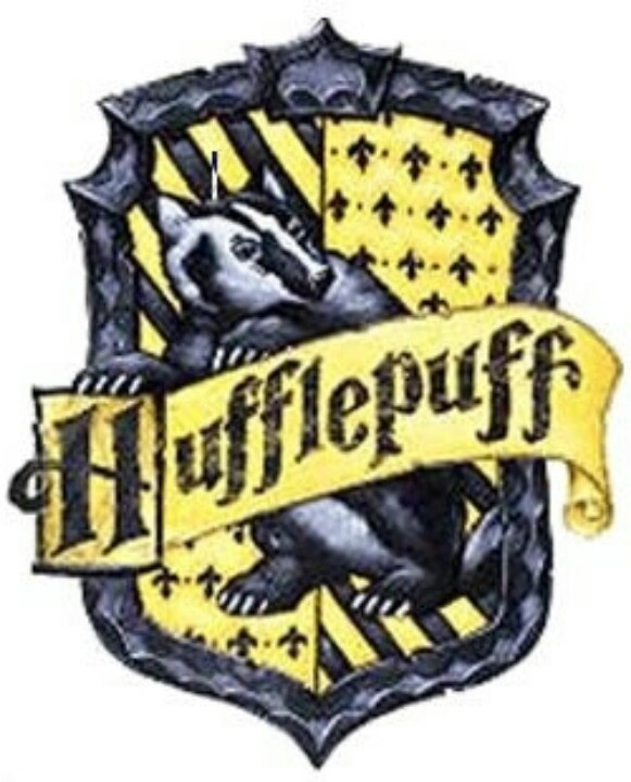 Which Hogwarts Houses Do These The 100 Characters Belong In