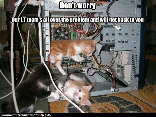 The best tech support.