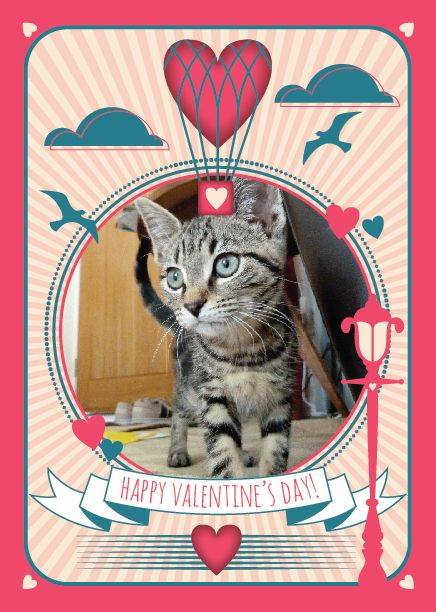 valentine's day uk 2014