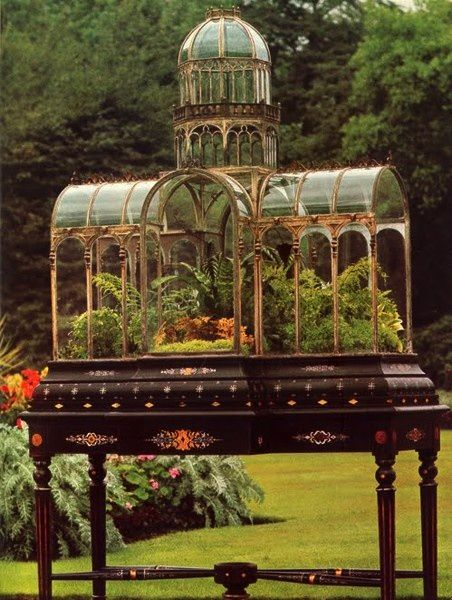 19th century Wardian Case   The Wardian case was the direct forerunner of the modern terrarium (and the inspiration for the glass aquarium), and was invented by Dr. Nathaniel Bagshaw Ward (1791–1868), of London, in about 1829 after an accidental discovery inspired him.