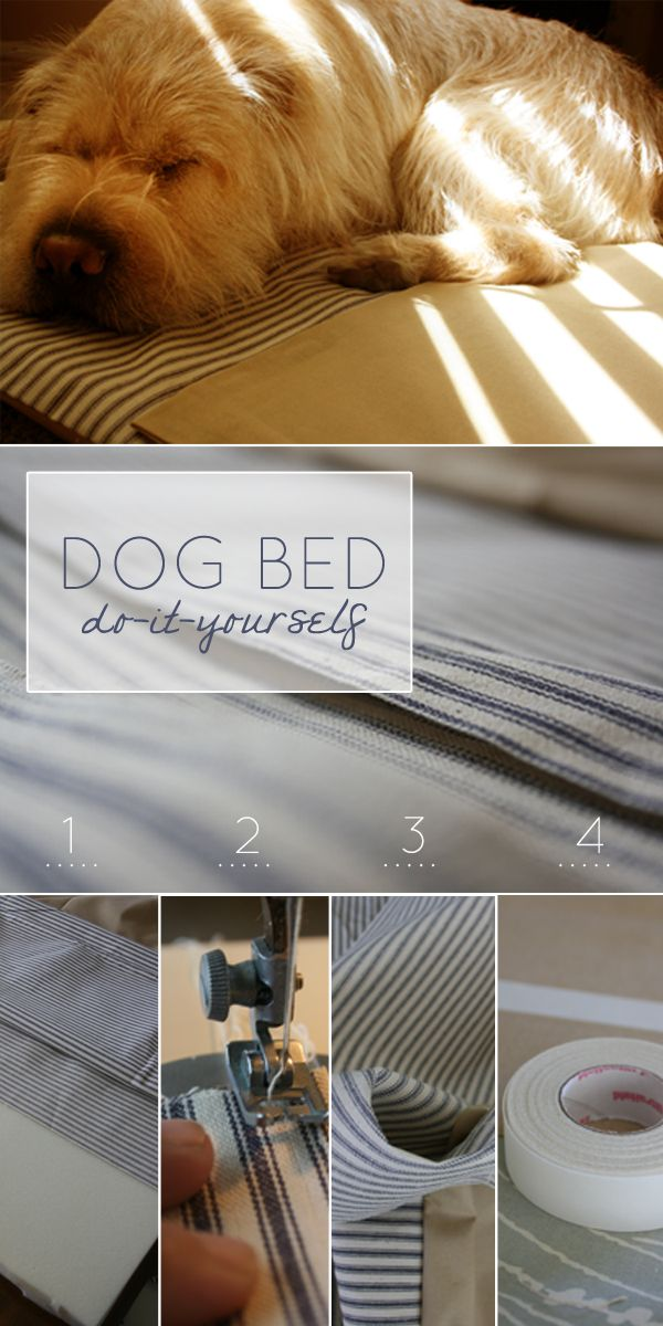DIY dog bed - Project this week is to build the dogs a house outdoors ...