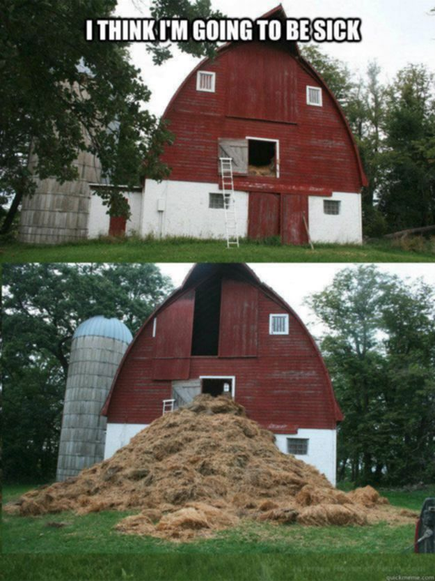 The barn has a weak constitution. Funny real estate house and home humor.