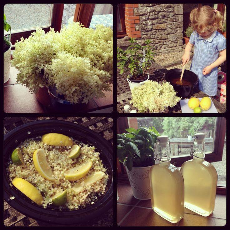 Homemade Elderflower Cordial | in my face! | Pinterest