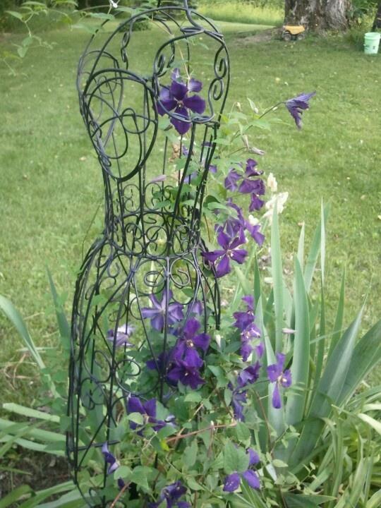 Unique Garden Trellis Ideas Photograph