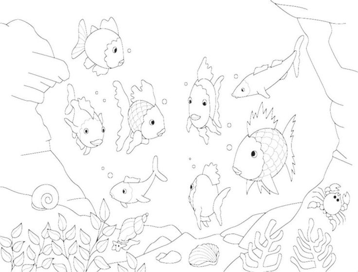 coloring pages of rainbow fish - photo#29