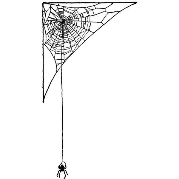 Corner spider web clip art