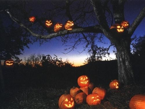 halloween usa west main