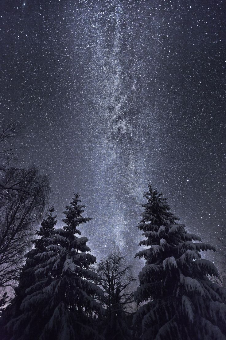 The Milky Way Winter Night Sky | my favourite nature ...