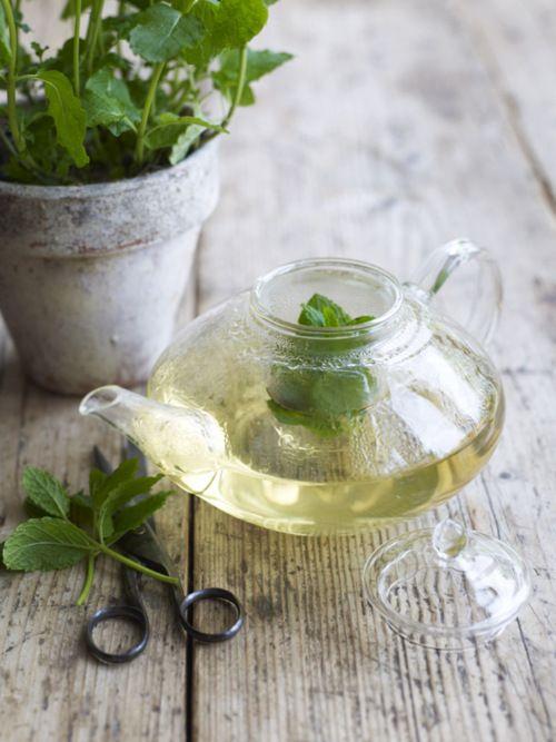 mint tea | Tea Time | Pinterest