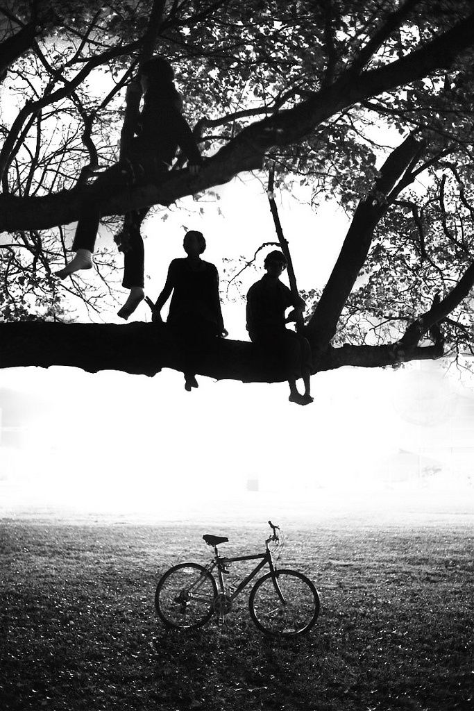 Benjamin Zank. Summer. Dream. Light. Play. Children. Tree. Claim. Branches. Life. Free. Feelings. True. Black & White. Great Photo. Grass. Bike. Action. Friends.