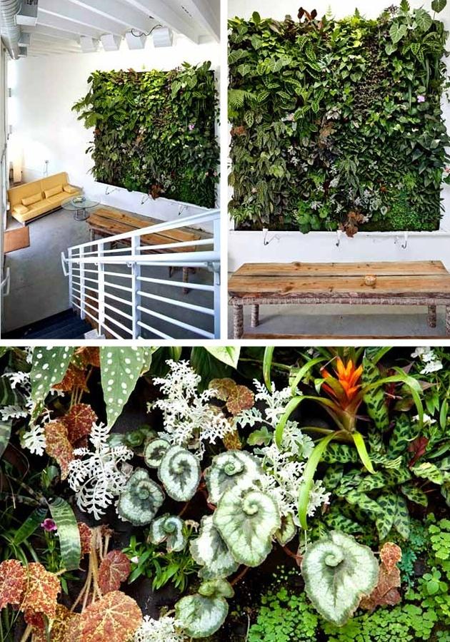 Indoor Vertical Gardens