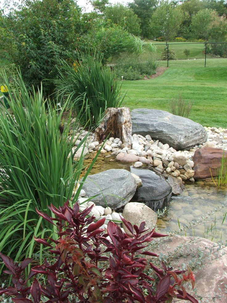 Backyard Ponds And Streams : backyard pond (2)  Backyard Ponds and Streams  Pinterest