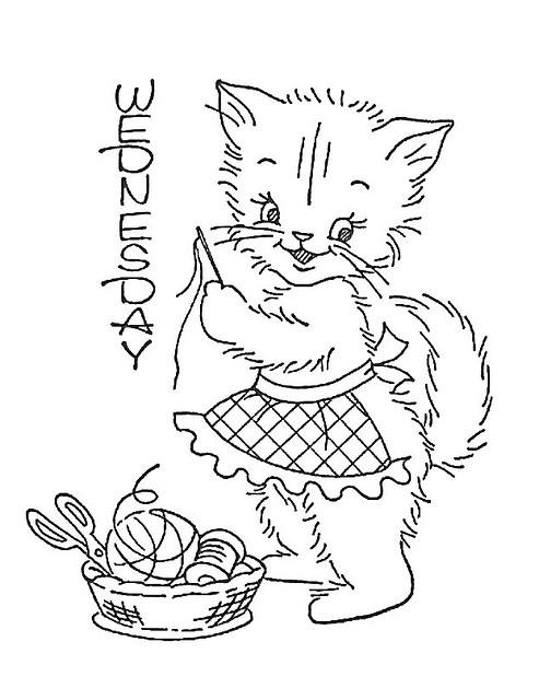 Wednesday kitty