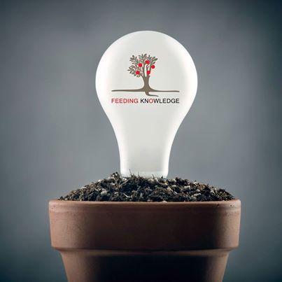 sustainable development dissertations