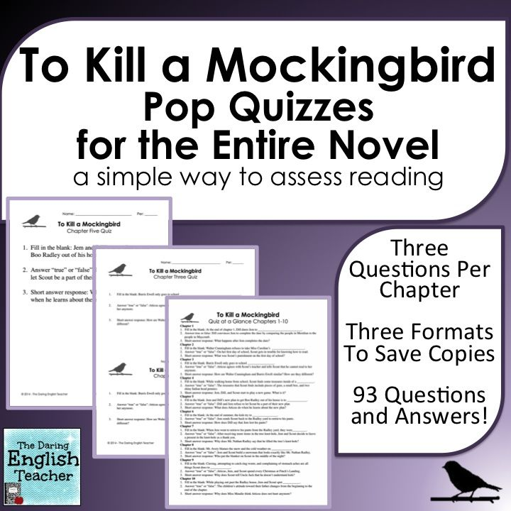 to kill a mockingbird essay questions by chapter