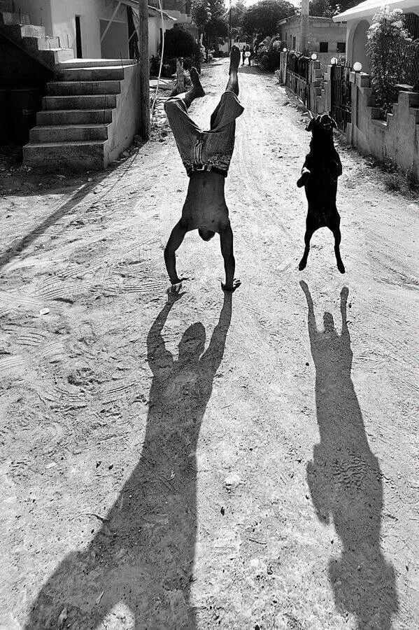 Shadows man dog fotografia black and white pinterest