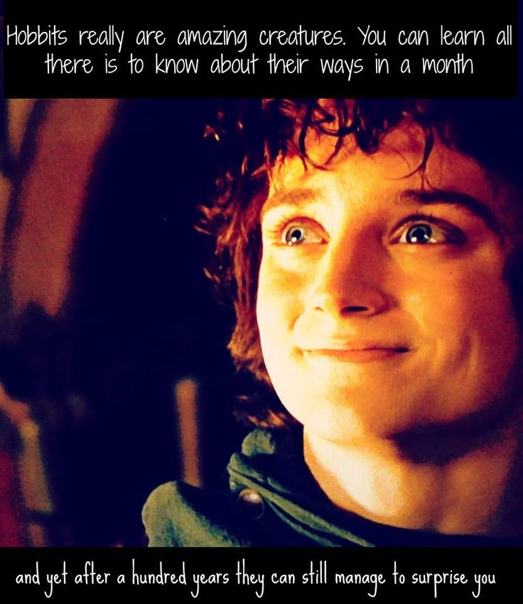 FRODO BAGGINS Quotes Like Success