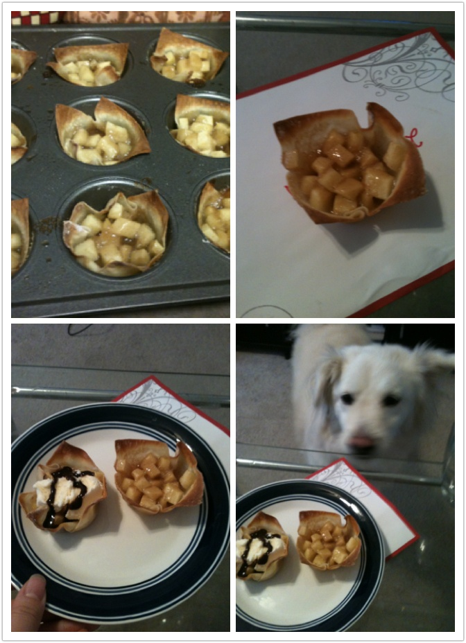 Oven baked mini apple pie with wonton wrap. So good and crisp! Our dog ...
