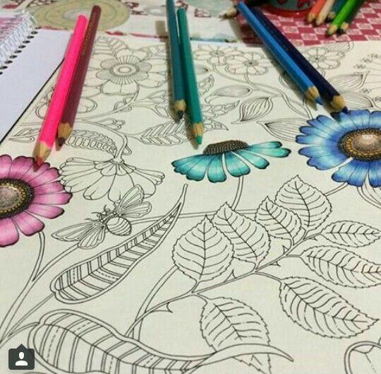 flor azul jardim secreto : flor azul jardim secreto:Johanna Basford Secret Garden
