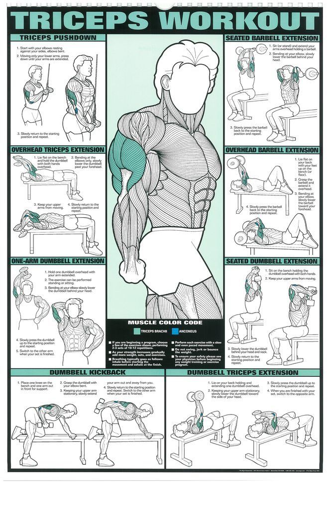 gym workout chart for men - Romeolandinez