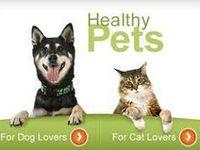 Animals:  Health...