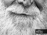 I always smile when I see a man with a beard; even when it's a dirty, grundgy, or silly one.