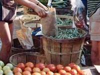 Farmers Market - Boerenmarkt - tuin oogst