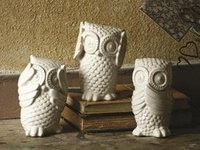 an owl bank from Brazil from my uncle in the Peace Corps started the love