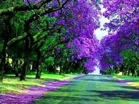 Beautiful Corridors