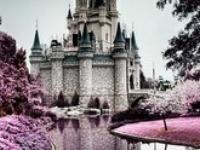 A princess home <3