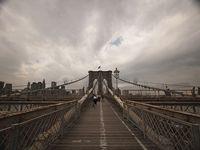 NYC + NY area
