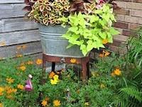 outside decor & gardening