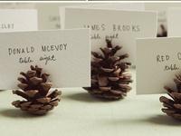 Crafts:  Pine Cones
