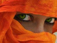 The Color Orange/Coral