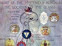 ...kundalini and subtle energy