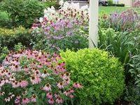 Outside - Gardening