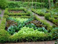 Potager: Kitchen and Cutting Gardens