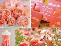 Wedding inspiration boards, color palette ideas, etc.