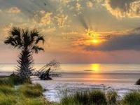 From the rising of the sun, unto the going down of the same, the LORD'S name is to be praised ~ Psalms 113:3