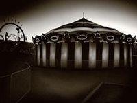 Night Circus!!!!