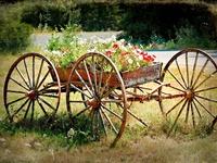 Wagon and Wagon Wheels