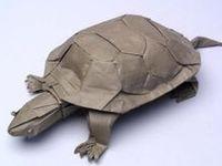 Quand les artistes et sculpteur donne vie à votre animal préférée à partir d'une simple feuille de papier #animauxpapier #sculptureanimaux