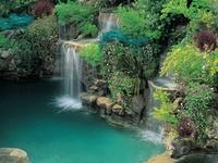 Garden, Outdoor Spaces, Wide Open Places
