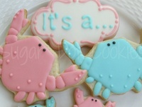 Baby Shower Cakes & Cookies