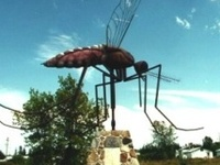 MINNESOTA - Land of over 10,000 mosquitoes!   or . . . Home Sweet Home