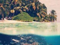swim, beaches and pools