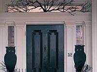 HOLIDAY: Halloween ideas