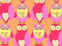Patterns of Owls