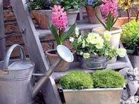 accessories: garden