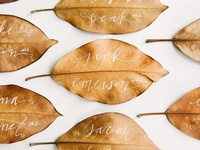 Help your wedding guests find their seat in style with unique ideas for place cards and escort cards.